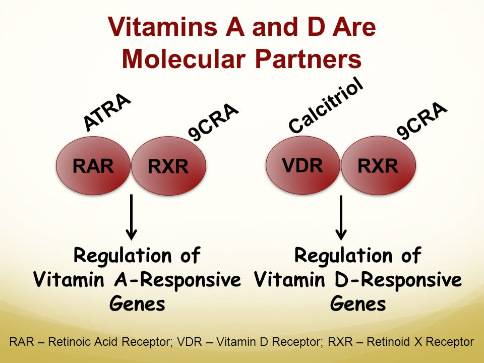 Vitamins A and D Are Molecular Partners RAR RXR VDR RXR Regulation of Vitamin A-Responsive Genes Regulation of Vitamin D-Responsive Genes 9CRA ATRA Ca