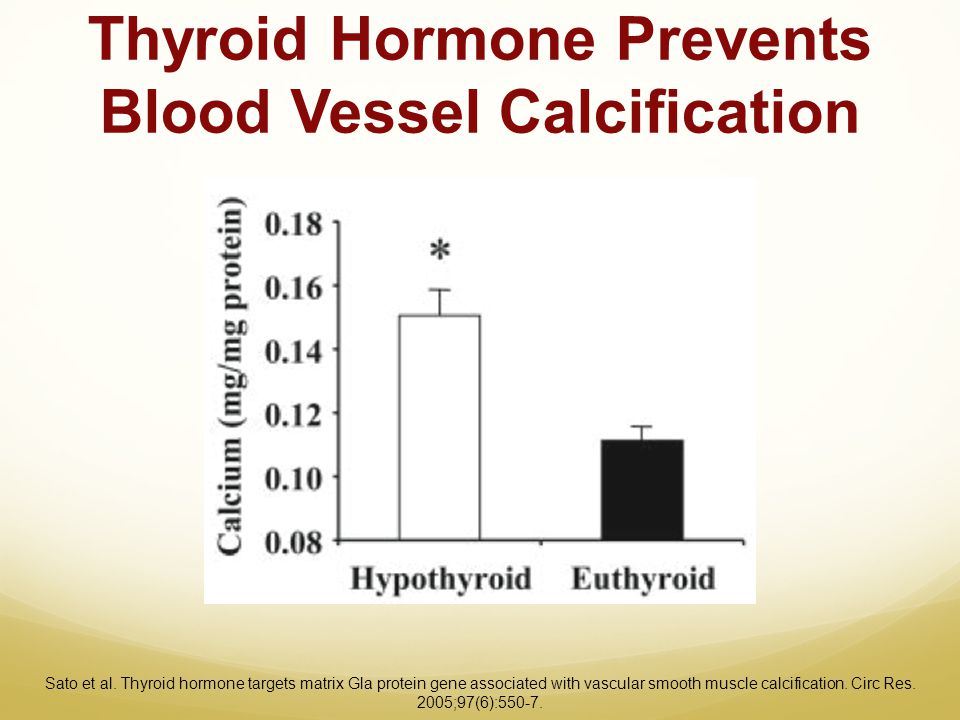 Thyroid Hormone Prevents Blood Vessel Calcification Sato et al. Thyroid hormone targets matrix Gla protein gene associated with vascular smooth muscle
