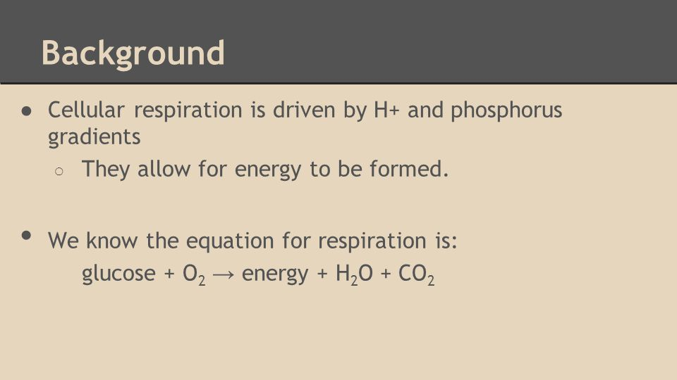 Background ●Cellular respiration is driven by H+ and phosphorus gradients ○ They allow for energy to be formed.