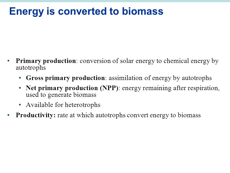 Energy is converted to biomass Primary production: conversion of solar energy to chemical energy by autotrophs Gross primary production: assimilation