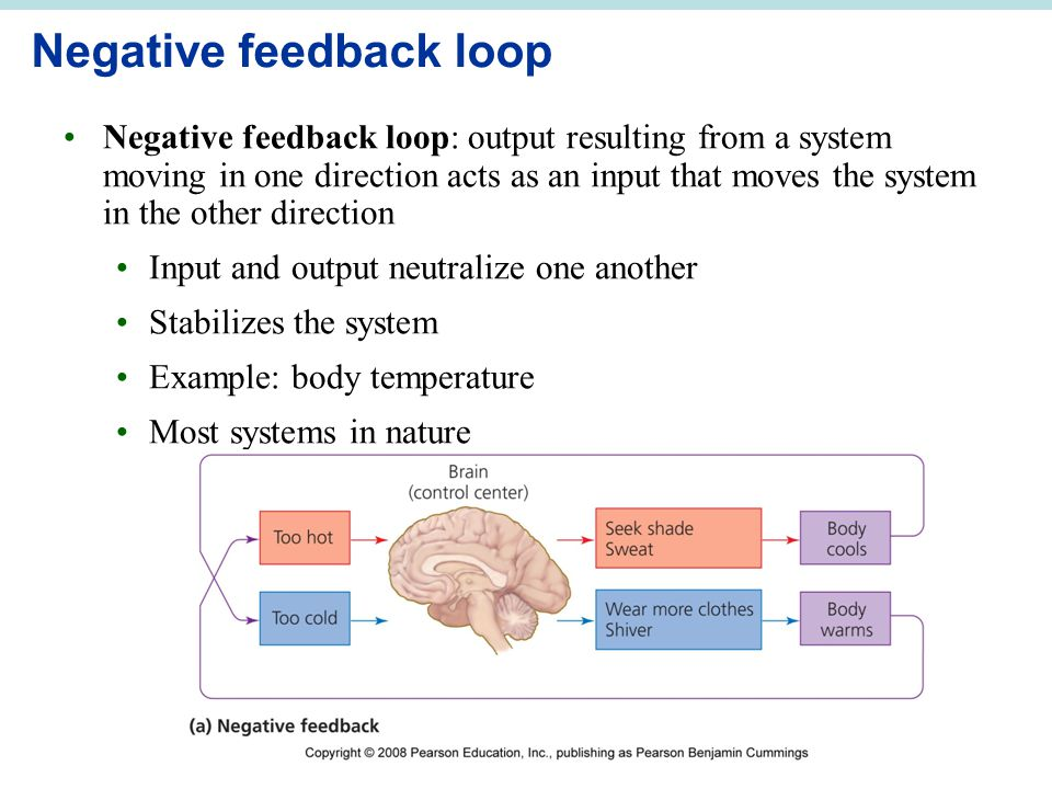 Negative feedback loop Negative feedback loop: output resulting from a system moving in one direction acts as an input that moves the system in the ot