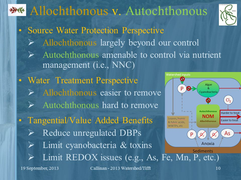 Allochthonous v. Autochthonous Source Water Protection Perspective  Allochthonous largely beyond our control  Autochthonous amenable to control via