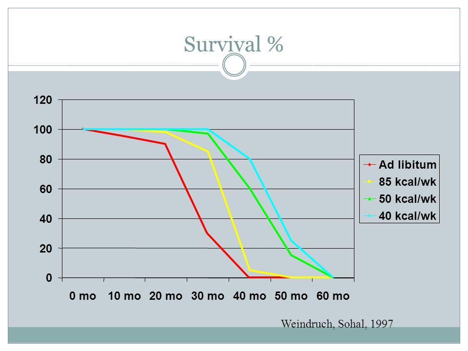 Survival % 0 20 40 60 80 100 120 0 mo10 mo20 mo30 mo40 mo50 mo60 mo Ad libitum 85 kcal/wk 50 kcal/wk 40 kcal/wk Weindruch, Sohal, 1997