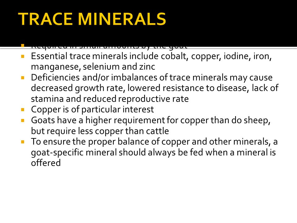  Required in small amounts by the goat  Essential trace minerals include cobalt, copper, iodine, iron, manganese, selenium and zinc  Deficiencies and/or imbalances of trace minerals may cause decreased growth rate, lowered resistance to disease, lack of stamina and reduced reproductive rate  Copper is of particular interest  Goats have a higher requirement for copper than do sheep, but require less copper than cattle  To ensure the proper balance of copper and other minerals, a goat-specific mineral should always be fed when a mineral is offered