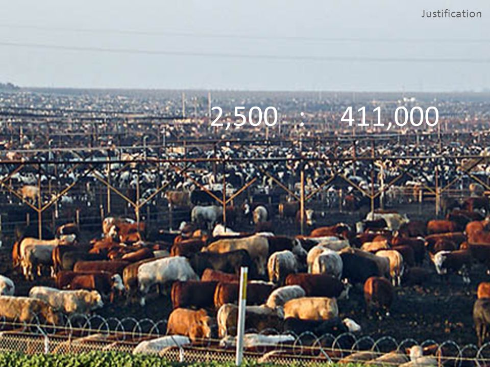 Nutrient Management Feedlots have various options to meet the obligations of the TMDL, from reducing the amount of nutrients in an animals manure through diet change, to spreading on nearby farmland, to converting manure into more standard fertilizers, for use outside of agriculture.