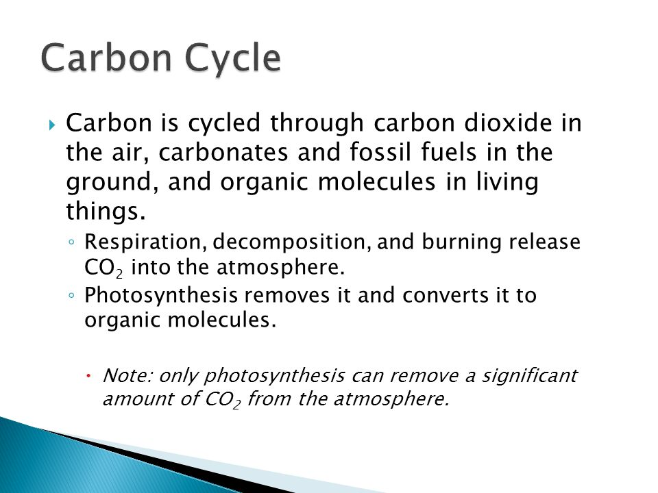  Carbon is cycled through carbon dioxide in the air, carbonates and fossil fuels in the ground, and organic molecules in living things.