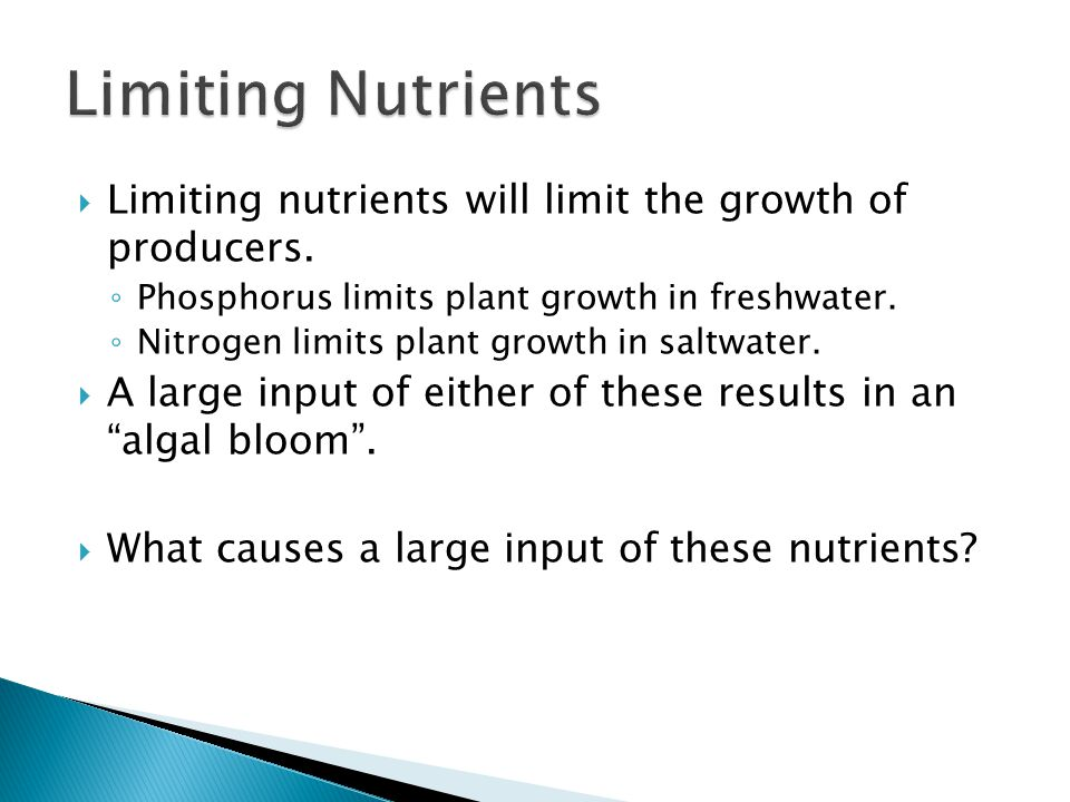  Limiting nutrients will limit the growth of producers.