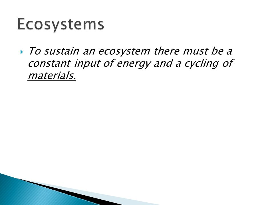  To sustain an ecosystem there must be a constant input of energy and a cycling of materials.