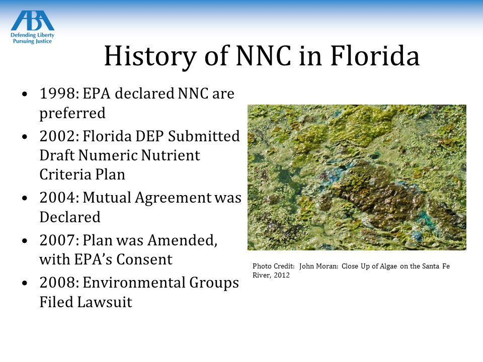 History of NNC in Florida 1998: EPA declared NNC are preferred 2002: Florida DEP Submitted Draft Numeric Nutrient Criteria Plan 2004: Mutual Agreement was Declared 2007: Plan was Amended, with EPA's Consent 2008: Environmental Groups Filed Lawsuit Photo Credit: John Moran: Close Up of Algae on the Santa Fe River, 2012