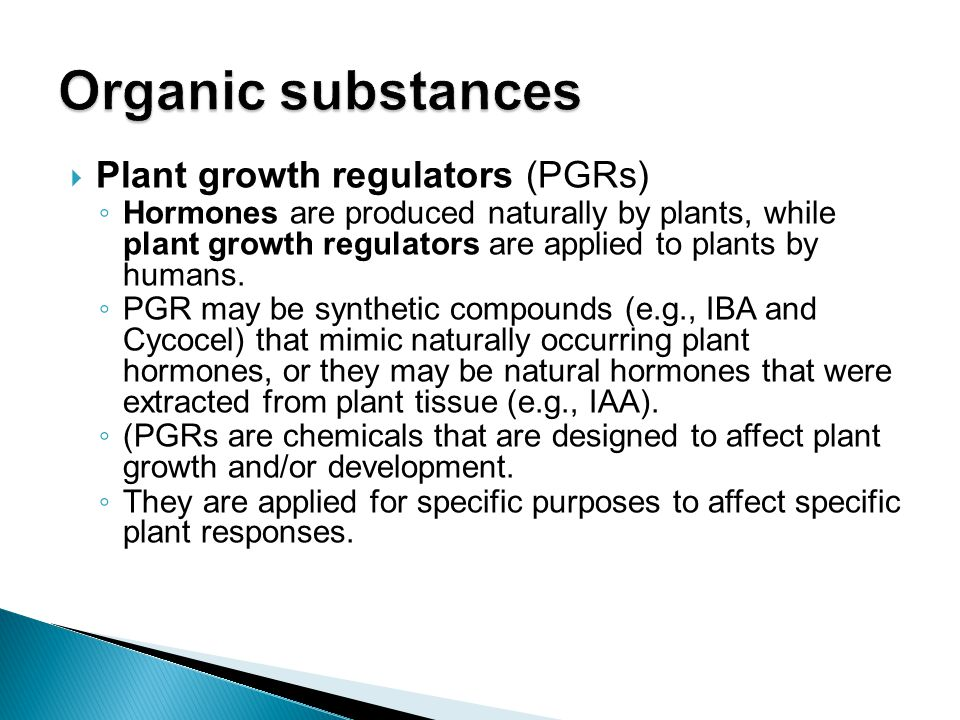  Plant growth regulators (PGRs) ◦ Hormones are produced naturally by plants, while plant growth regulators are applied to plants by humans. ◦ PGR may