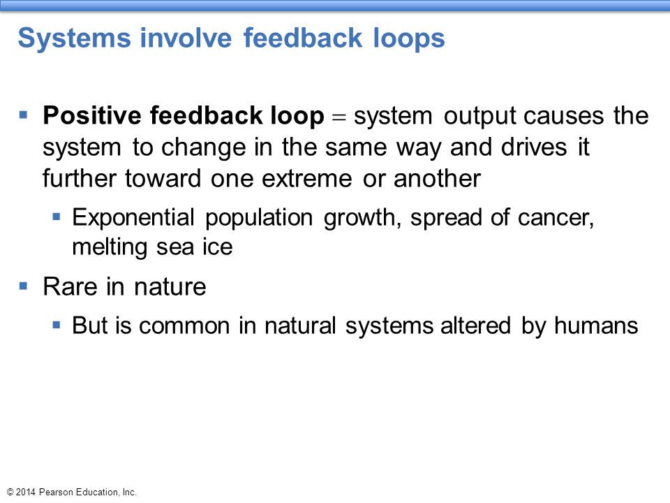 © 2014 Pearson Education, Inc. Systems involve feedback loops  Positive feedback loop  system output causes the system to change in the same way and