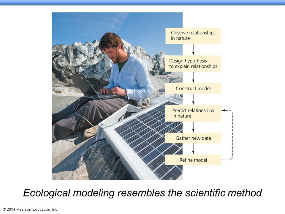 © 2014 Pearson Education, Inc. Ecological modeling resembles the scientific method