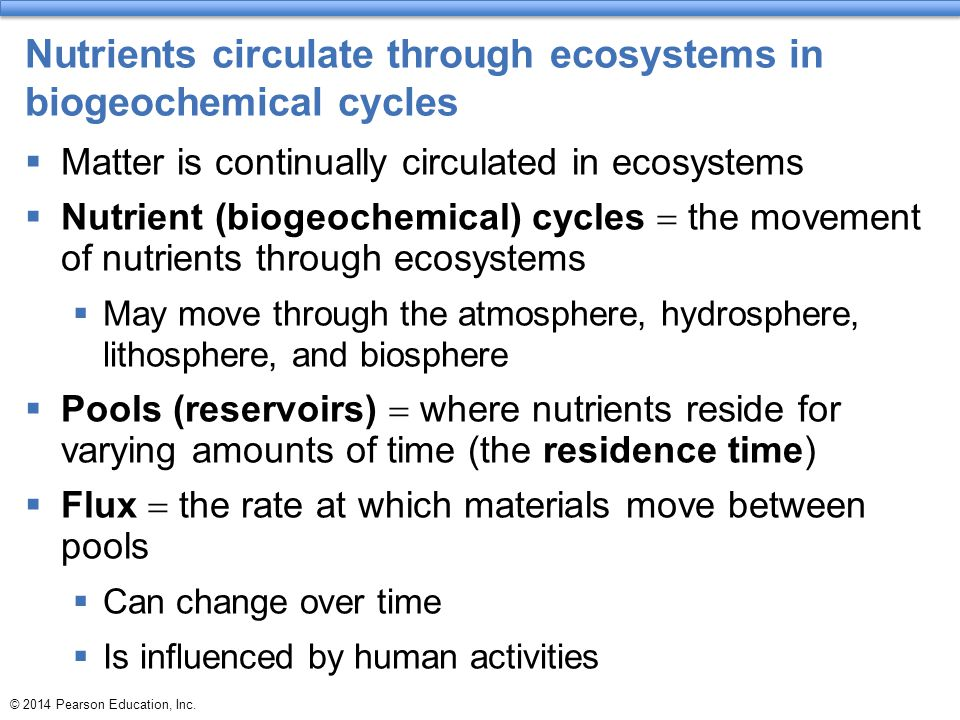 Nutrients circulate through ecosystems in biogeochemical cycles  Matter is continually circulated in ecosystems  Nutrient (biogeochemical) cycles 