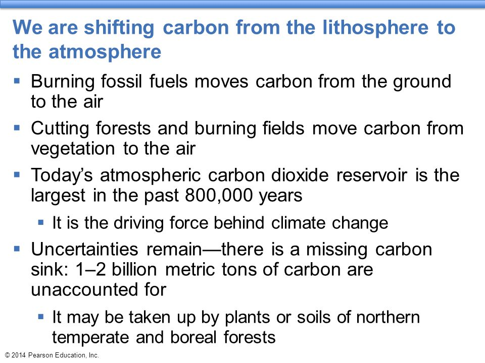 We are shifting carbon from the lithosphere to the atmosphere  Burning fossil fuels moves carbon from the ground to the air  Cutting forests and bur