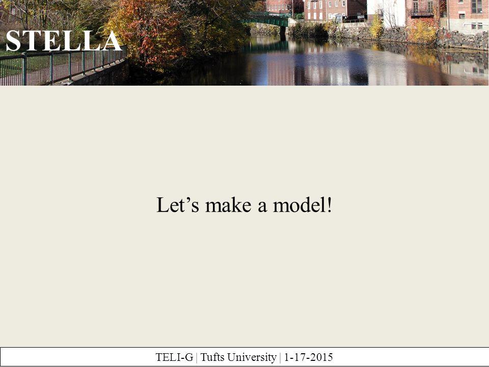 STELLA TELI-G | Tufts University | 1-17-2015 Let's make a model!