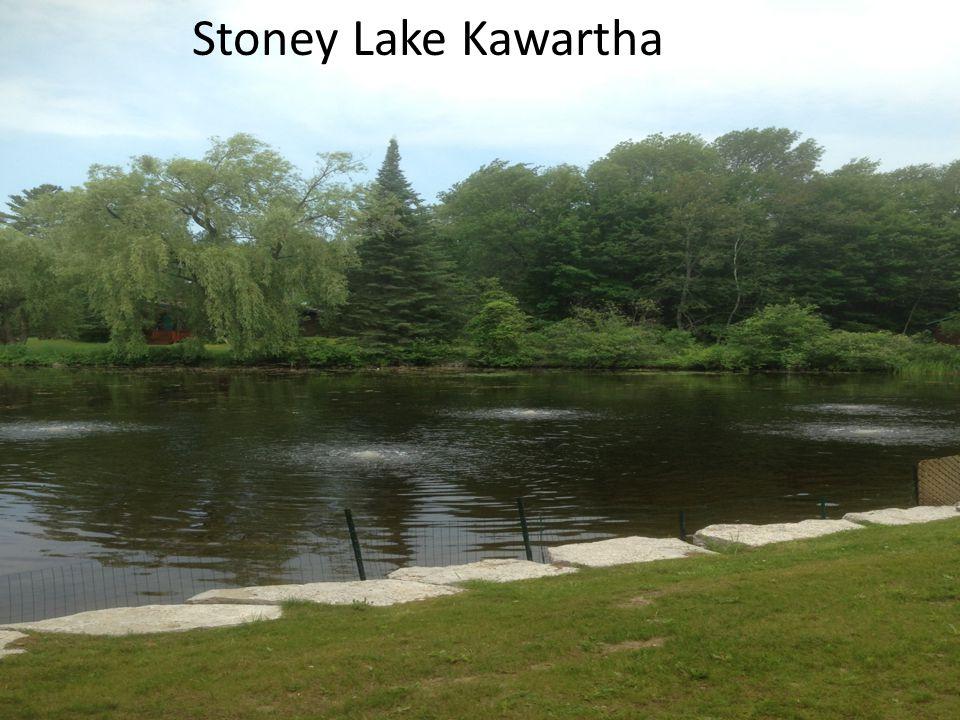 Stoney Lake Kawartha
