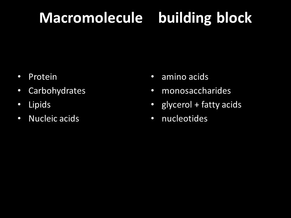 Macromolecule building block Protein Carbohydrates Lipids Nucleic acids amino acids monosaccharides glycerol + fatty acids nucleotides