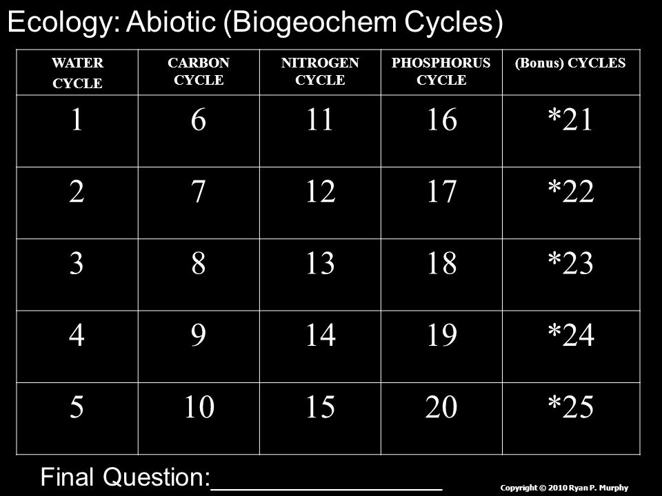 WATER CYCLE CARBON CYCLE NITROGEN CYCLE PHOSPHORUS CYCLE (Bonus) CYCLES 161116*21 271217*22 381318*23 491419*24 5101520*25 Copyright © 2010 Ryan P.
