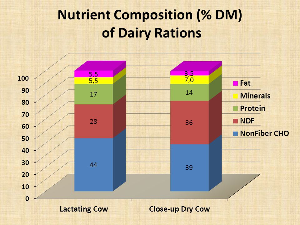 Nutrient Composition (% DM) of Dairy Rations