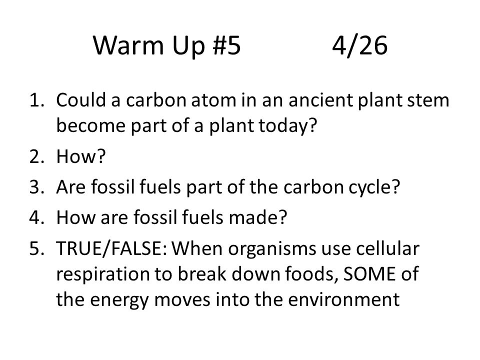 Warm Up #54/26 1.Could a carbon atom in an ancient plant stem become part of a plant today.