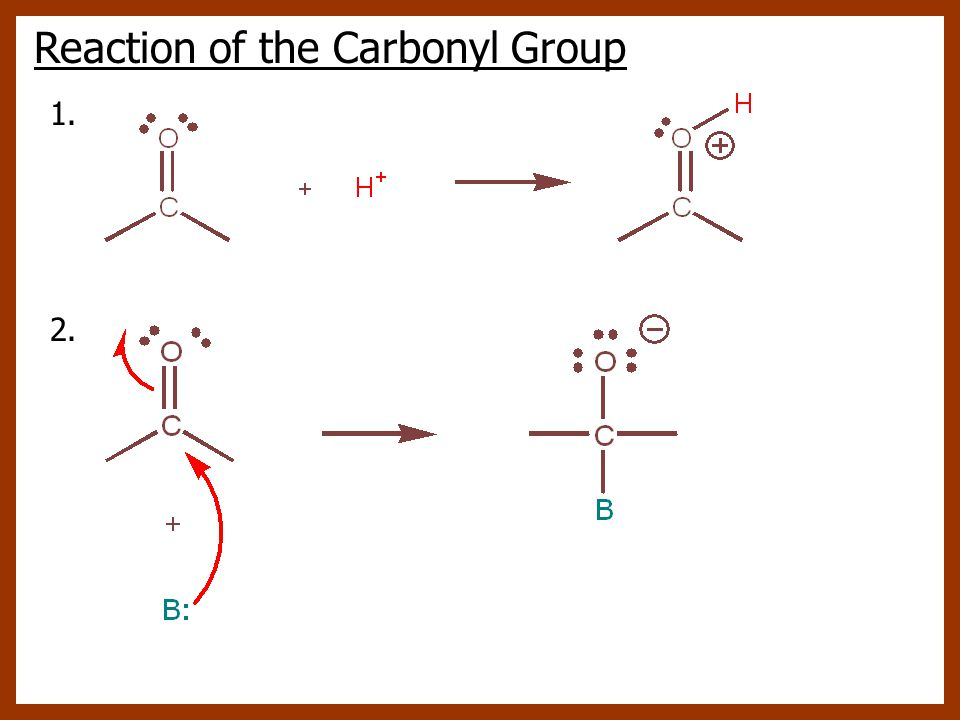 Reaction of the Carbonyl Group 1. 2.