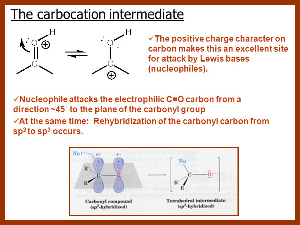 The carbocation intermediate Nucleophile attacks the electrophilic C=O carbon from a direction ~45˚ to the plane of the carbonyl group At the same tim