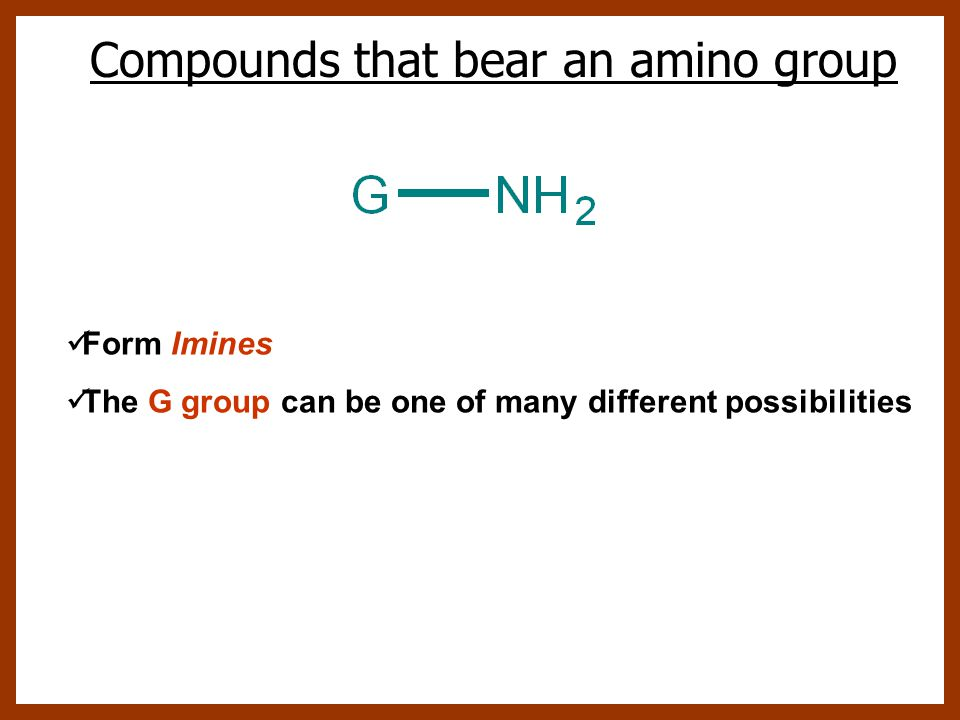 Compounds that bear an amino group Form Imines The G group can be one of many different possibilities