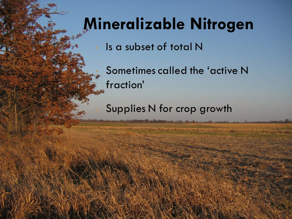 Is a subset of total N Sometimes called the 'active N fraction' Supplies N for crop growth Mineralizable Nitrogen