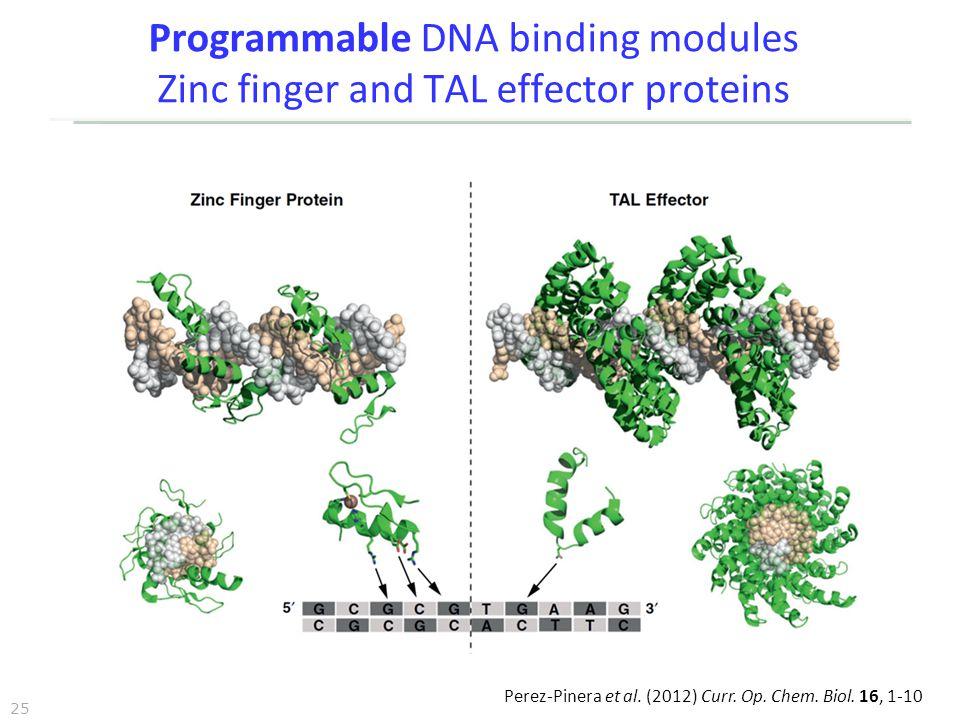 25 Programmable DNA binding modules Zinc finger and TAL effector proteins Perez-Pinera et al. (2012) Curr. Op. Chem. Biol. 16, 1-10
