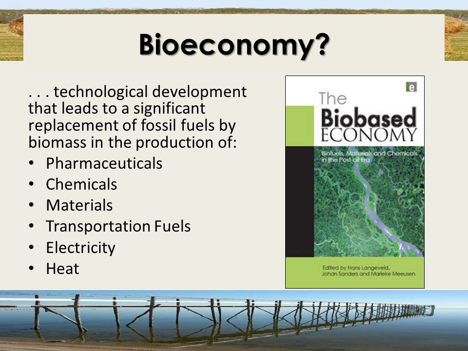 Bioeconomy?... technological development that leads to a significant replacement of fossil fuels by biomass in the production of: Pharmaceuticals Chem