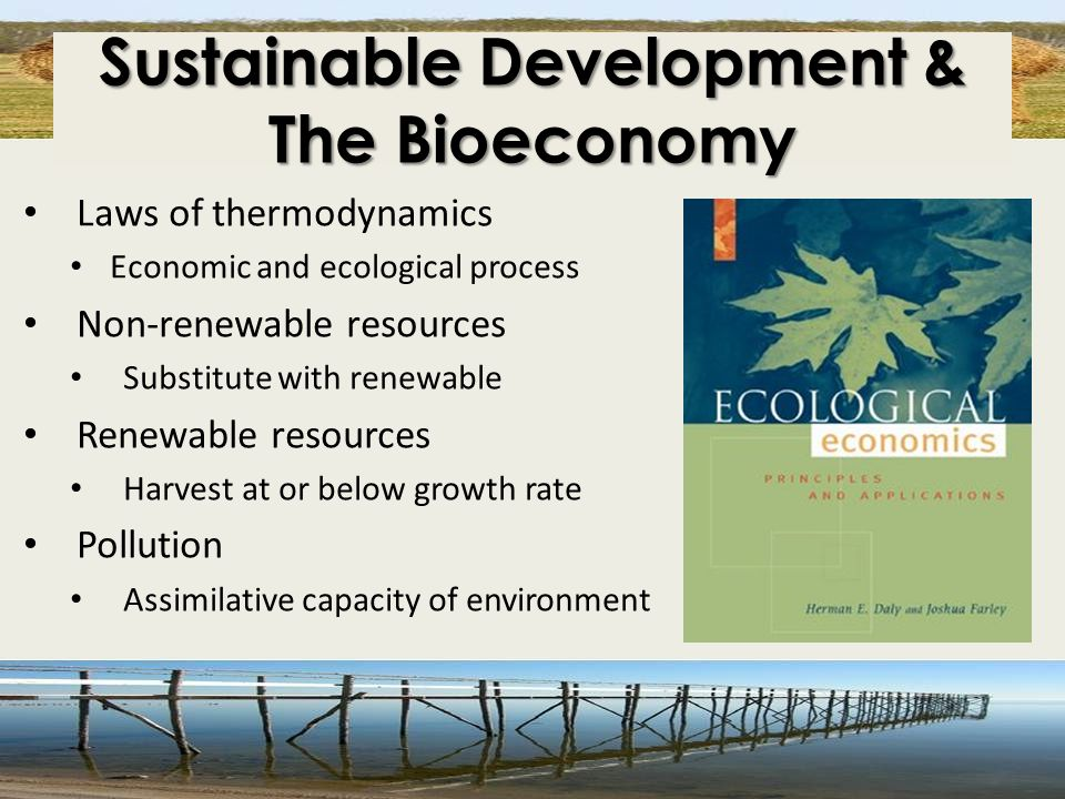 Sustainable Development & The Bioeconomy Laws of thermodynamics Economic and ecological process Non-renewable resources Substitute with renewable Rene