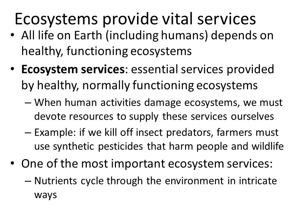 Ecosystems provide vital services All life on Earth (including humans) depends on healthy, functioning ecosystems Ecosystem services: essential servic