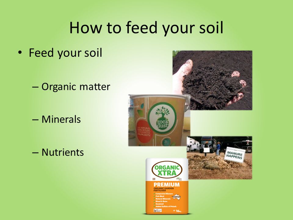 How to feed your soil Feed your soil – Organic matter – Minerals – Nutrients