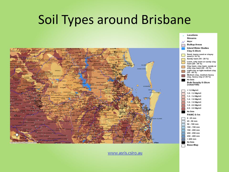 Brisbane has four main soil types: dark alluvial soils deep red loamy soils gravelly red and yellow loamy top soils over clay shallow gravelly soils