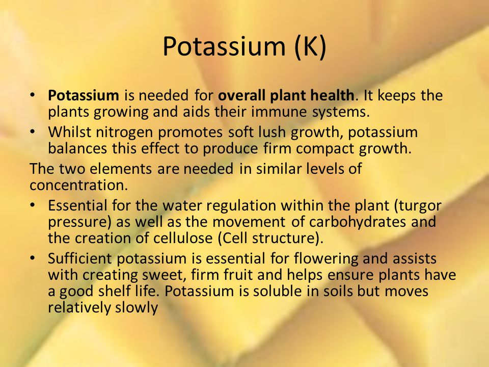 Potassium (K) Potassium is needed for overall plant health.