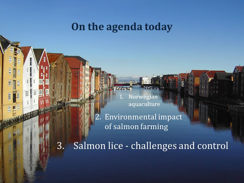 On the agenda today 1.Norwegian aquaculture 2.Environmental impact of salmon farming 3.Salmon lice - challenges and control