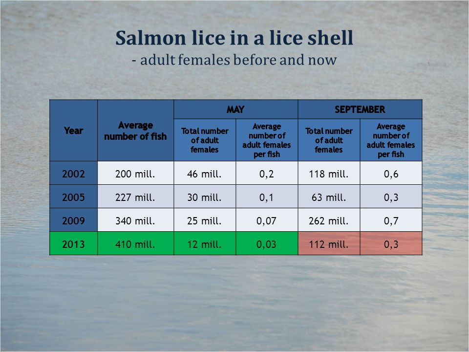 Salmon lice in a lice shell - adult females before and now 2002200 mill.46 mill.0,2118 mill.0,6 2005227 mill.30 mill.0,163 mill.0,3 2009340 mill.25 mill.0,07262 mill.0,7 2013410 mill.12 mill.0,03112 mill.0,3