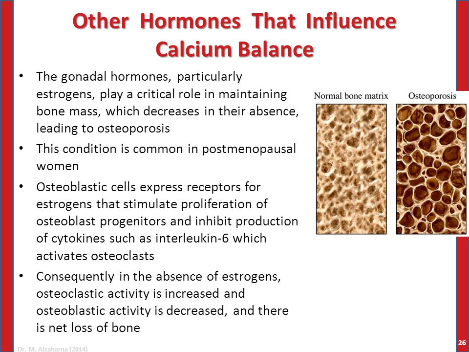 Dr. M. Alzaharna (2014) Other Hormones That Influence Calcium Balance The gonadal hormones, particularly estrogens, play a critical role in maintainin
