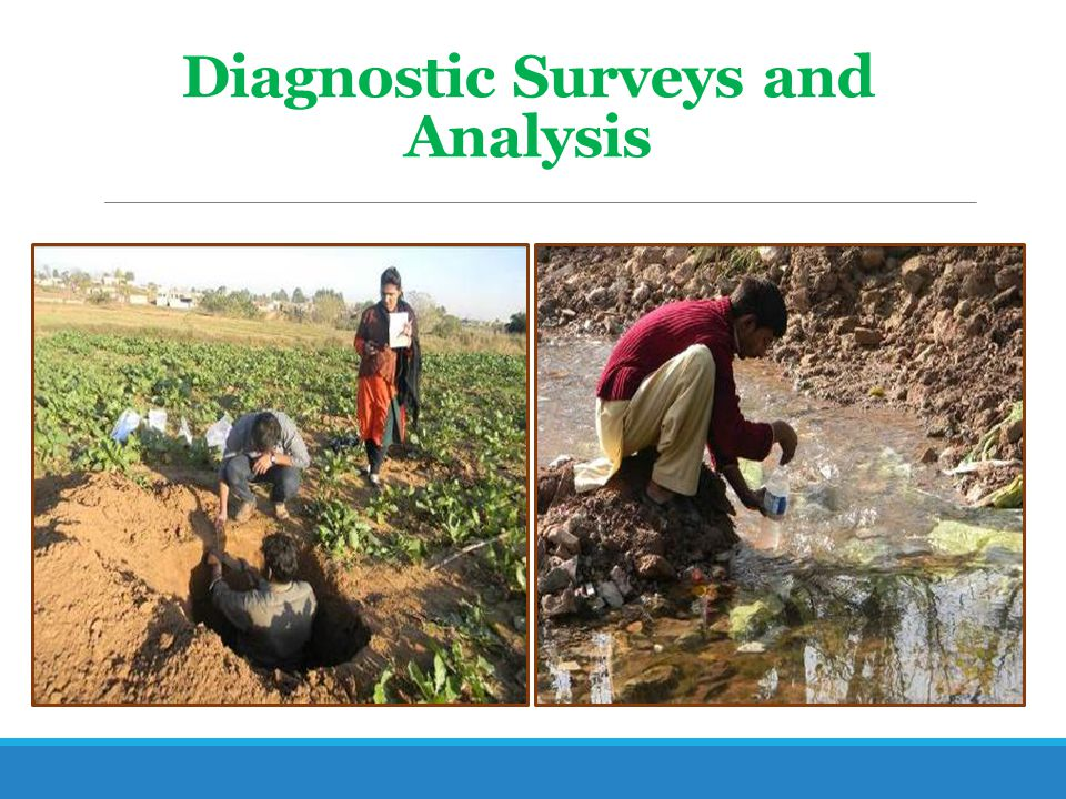 Diagnostic Surveys and Analysis
