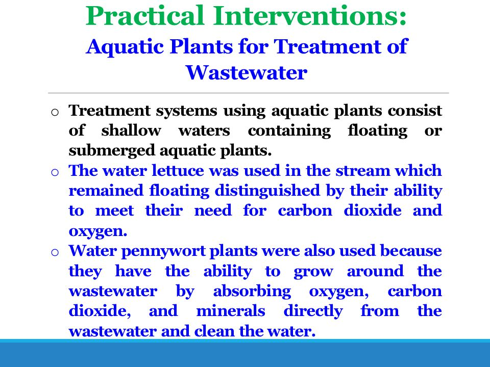 Practical Interventions: Aquatic Plants for Treatment of Wastewater o Treatment systems using aquatic plants consist of shallow waters containing floa