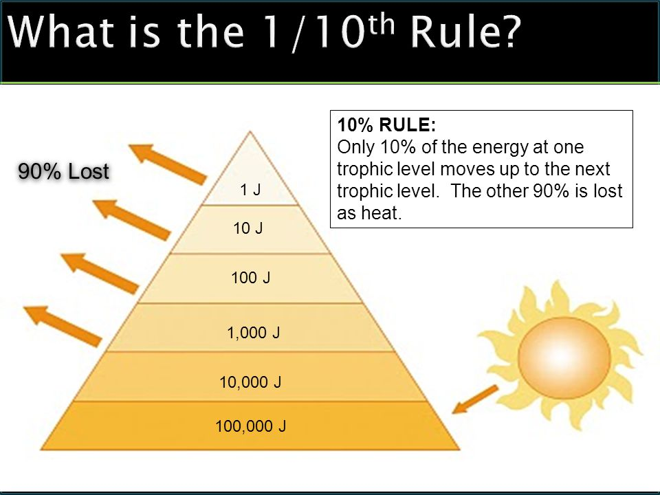 What is the 1/10 th Rule.