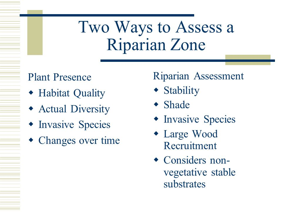 Two Ways to Assess a Riparian Zone Plant Presence  Habitat Quality  Actual Diversity  Invasive Species  Changes over time Riparian Assessment  Stability  Shade  Invasive Species  Large Wood Recruitment  Considers non- vegetative stable substrates