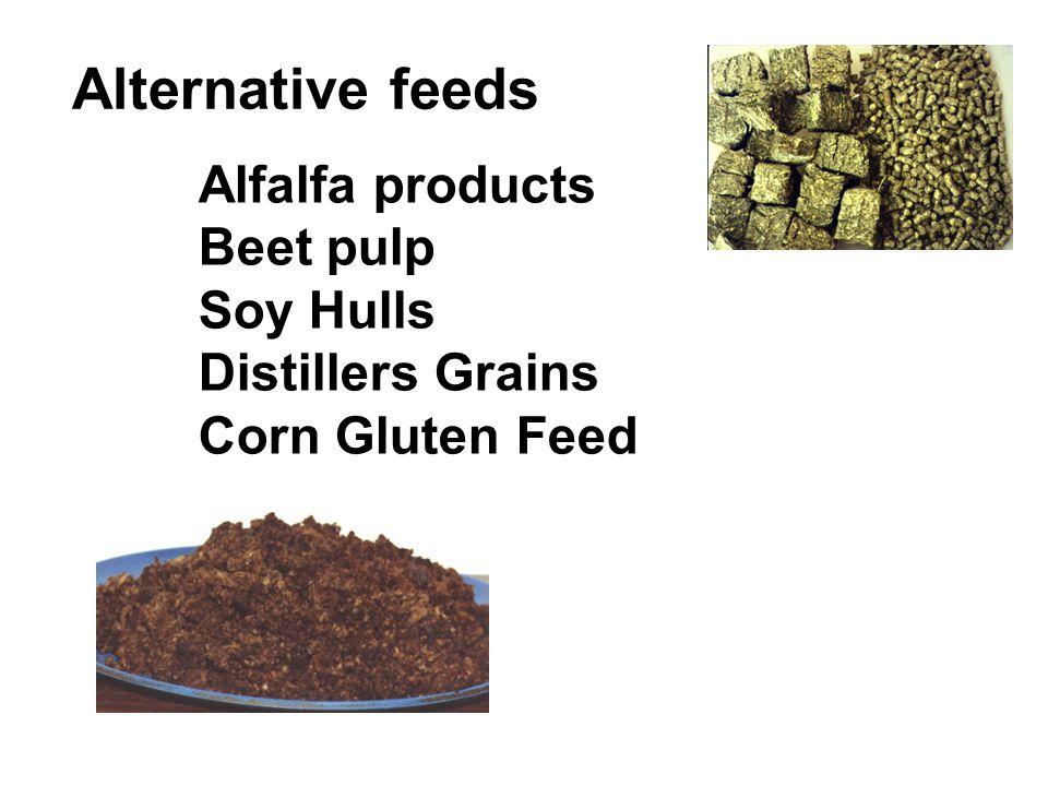 Alternative feeds Alfalfa products Beet pulp Soy Hulls Distillers Grains Corn Gluten Feed