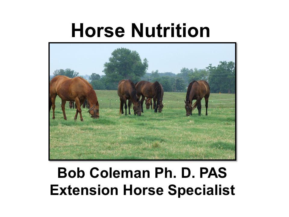 Horse Nutrition Bob Coleman Ph. D. PAS Extension Horse Specialist