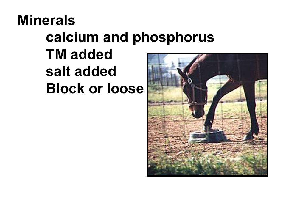 Minerals calcium and phosphorus TM added salt added Block or loose