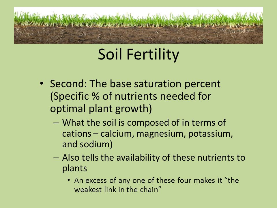 Second: The base saturation percent (Specific % of nutrients needed for optimal plant growth) – What the soil is composed of in terms of cations – cal