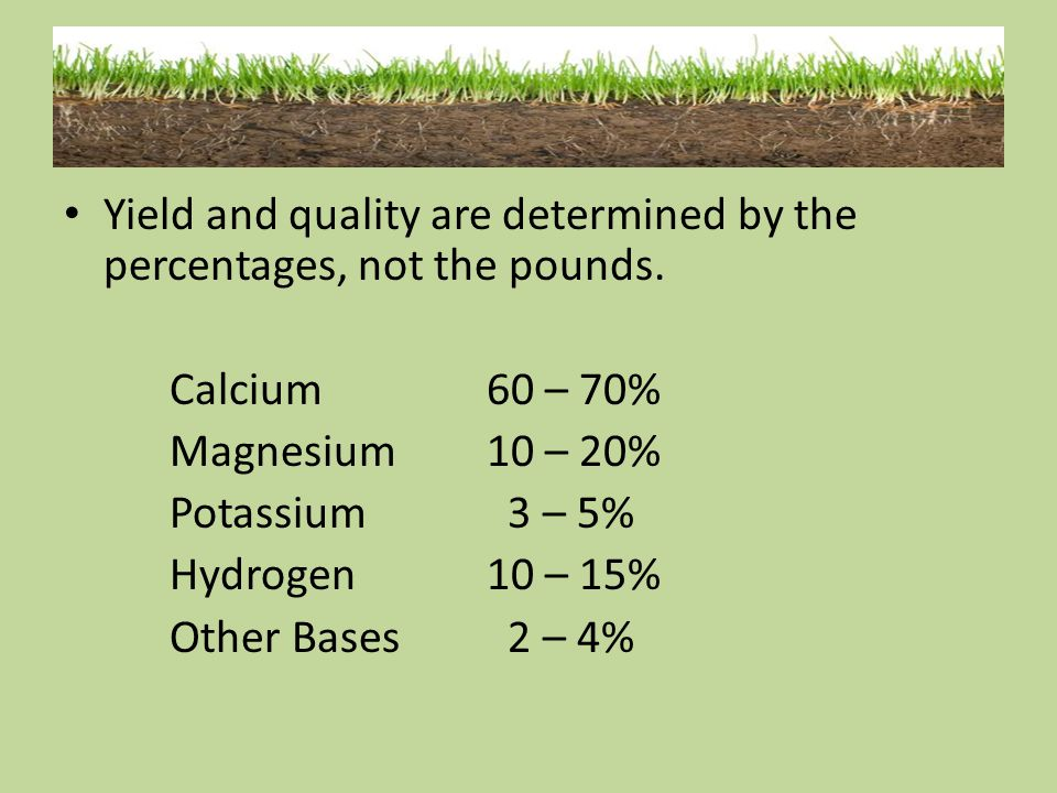 Yield and quality are determined by the percentages, not the pounds. Calcium60 – 70% Magnesium10 – 20% Potassium 3 – 5% Hydrogen10 – 15% Other Bases 2