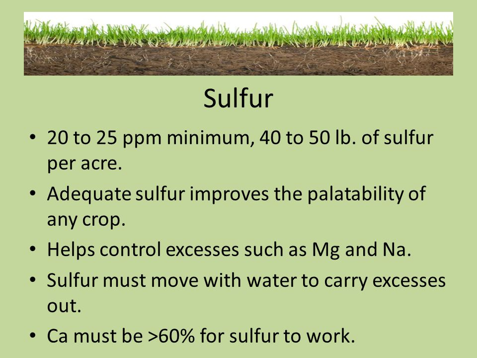 Sulfur 20 to 25 ppm minimum, 40 to 50 lb. of sulfur per acre. Adequate sulfur improves the palatability of any crop. Helps control excesses such as Mg