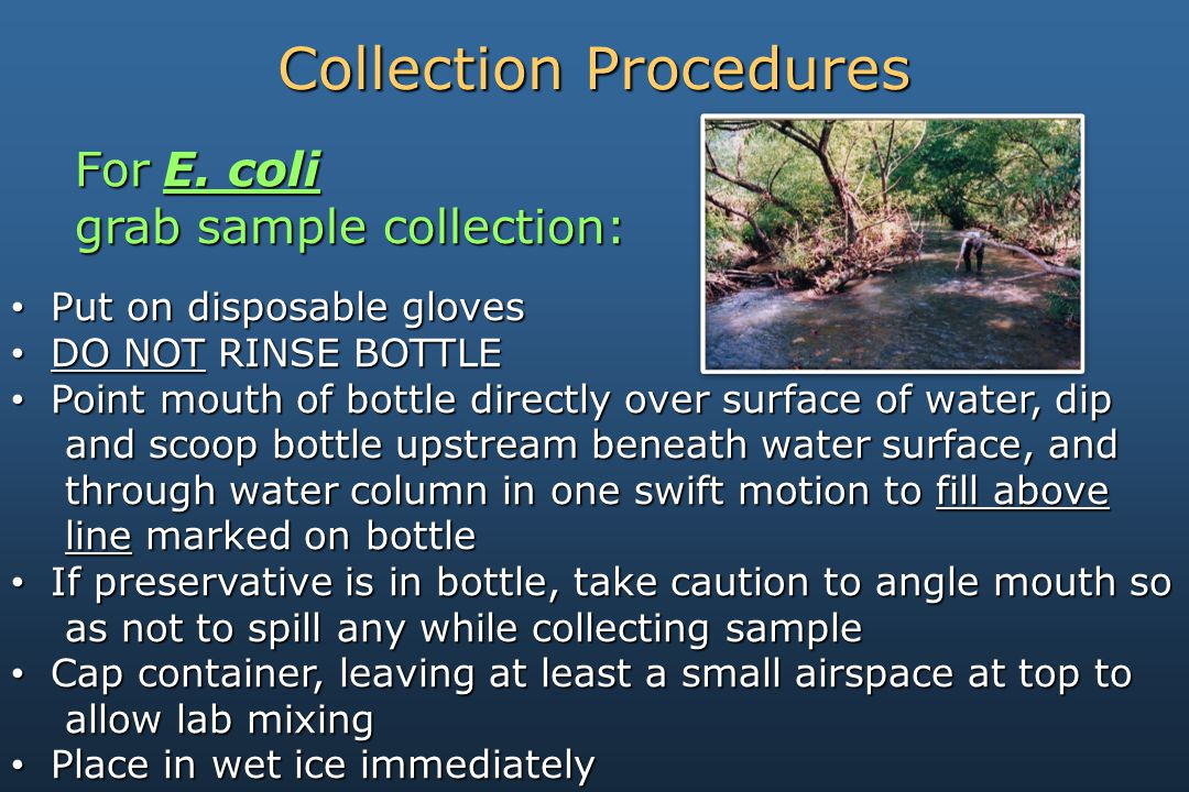 Put on disposable gloves Put on disposable gloves DO NOT RINSE BOTTLE DO NOT RINSE BOTTLE Point mouth of bottle directly over surface of water, dip Point mouth of bottle directly over surface of water, dip and scoop bottle upstream beneath water surface, and and scoop bottle upstream beneath water surface, and through water column in one swift motion to fill above through water column in one swift motion to fill above line marked on bottle line marked on bottle If preservative is in bottle, take caution to angle mouth so If preservative is in bottle, take caution to angle mouth so as not to spill any while collecting sample as not to spill any while collecting sample Cap container, leaving at least a small airspace at top to Cap container, leaving at least a small airspace at top to allow lab mixing allow lab mixing Place in wet ice immediately Place in wet ice immediately ForE.