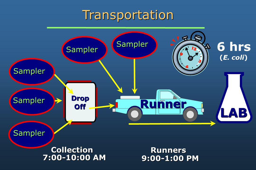 Runner LAB Sampler Drop Off Sampler Sampler Sampler Sampler 6 hrs (E.